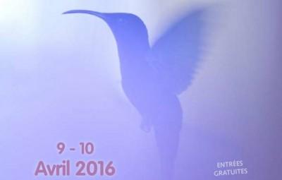 flyer-naturimages-2016-verso-blog
