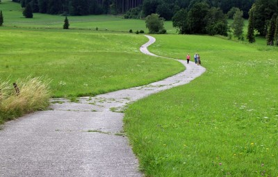 trail-402895_960_720