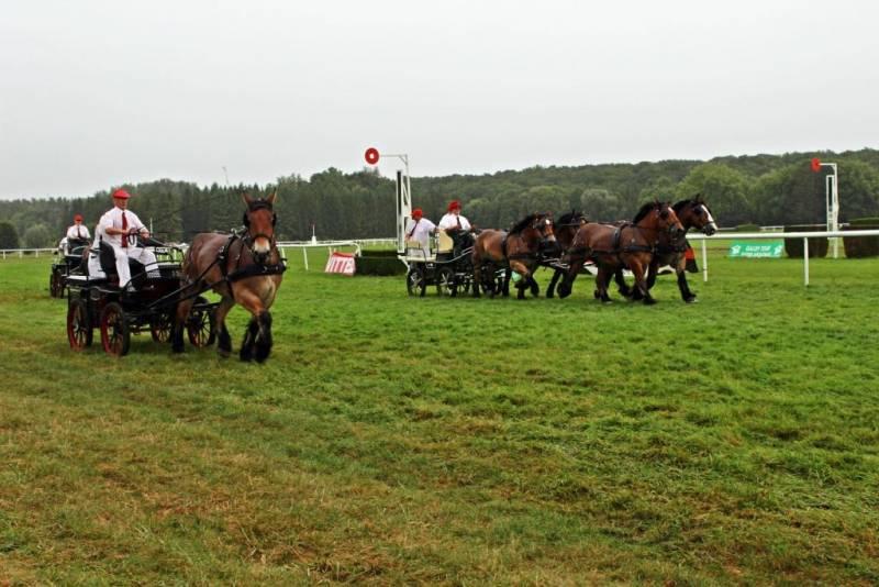 concours-ardennai-Vittel (10)