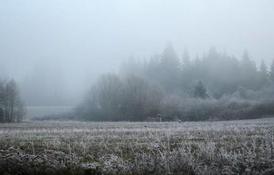 snow-1673524_960_720