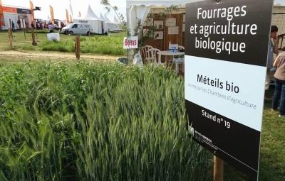(photographies : Chambre d'Agriculture des Vosges)
