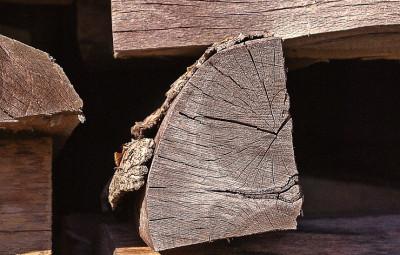 wood-499077_960_720