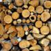 firewood-2936209_960_720