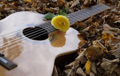 guitar-2806928_960_720
