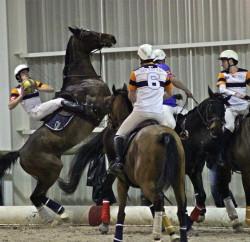 horseball-Vittel (12)