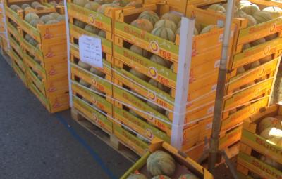 Foire aux melons (Boulaincourt)