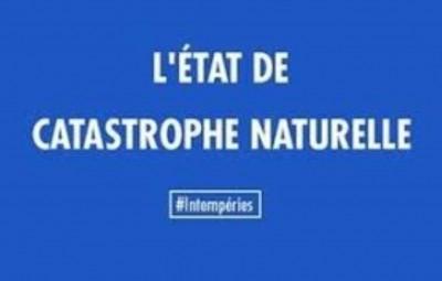Catastrophe naturelle (Large)