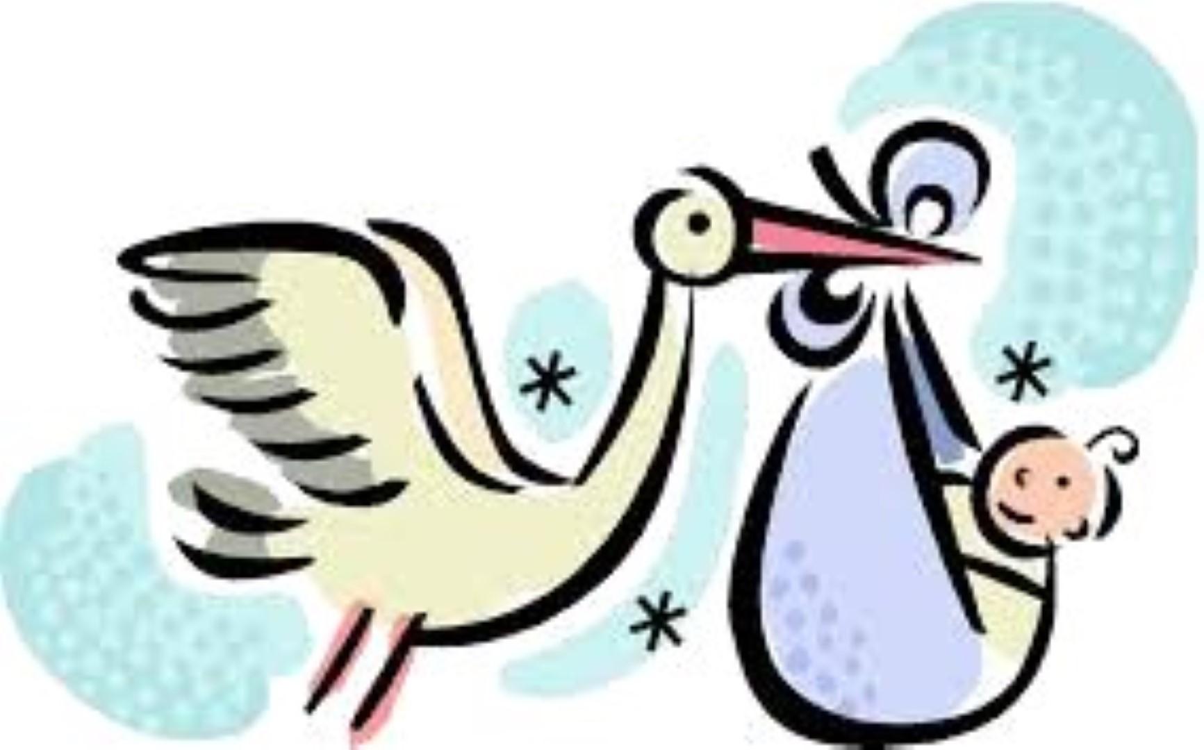 Avis de naissance (illustration)