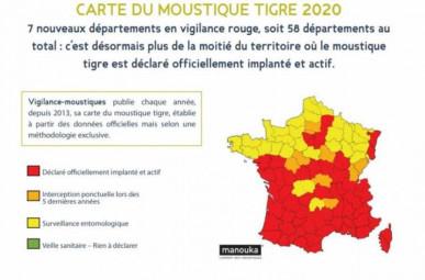 moustique-tigre2020-800x527