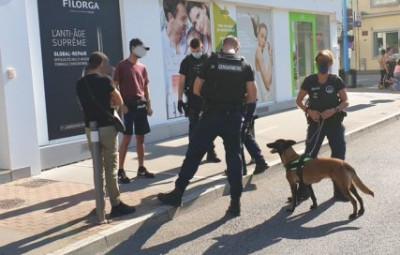 (Photos gendarmerie des Vosges)