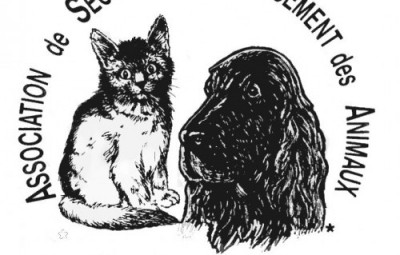 logo-aspa-transparent-noir-fond-blanc-avatar